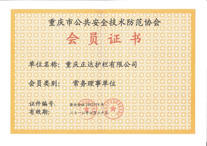 2017年龙8官网手机版国际安防常务理事单位