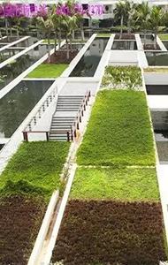 防渗透种植屋面