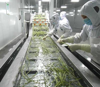 鲜活农产品冷链生产线