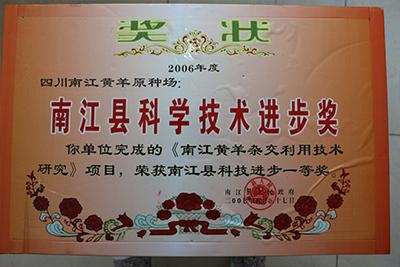 2006年南江县科技进步一等奖