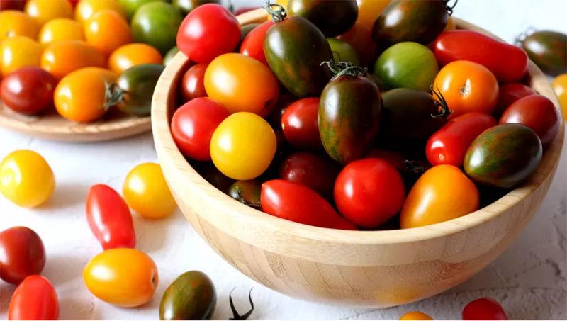 番茄好多种,这些你认得不?