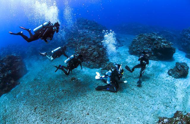 登山和潜水哪一个比较容易入门?