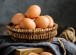 精品鮮雞蛋