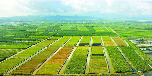 观光农业的5大类型,7大盈利模式要知道