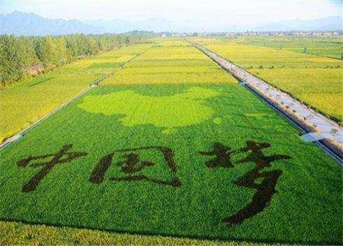 观光生态农业模式,了解一下
