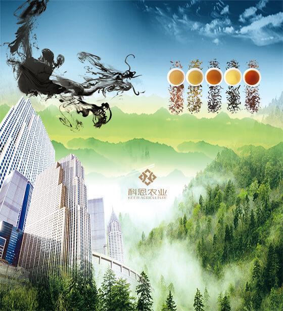 科恩農業科技開發有限公司