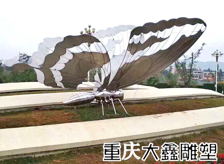 贵州毕节蝴蝶