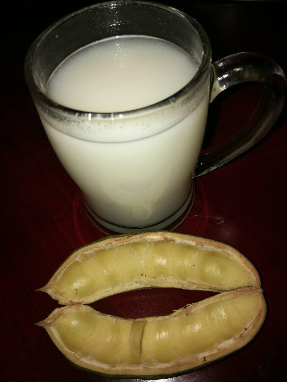 肥皂荚植物蛋白奶