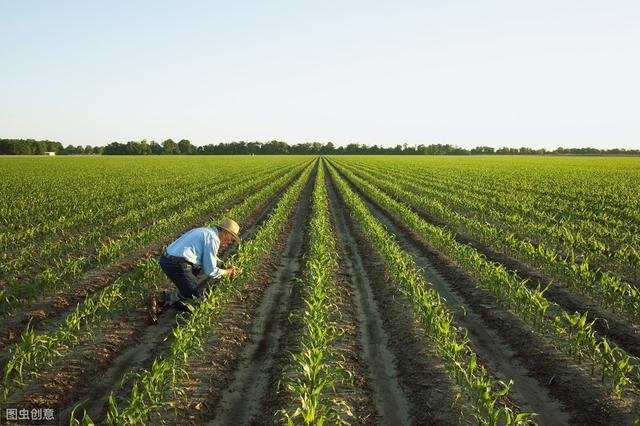 中国农业未来发展的9大趋势