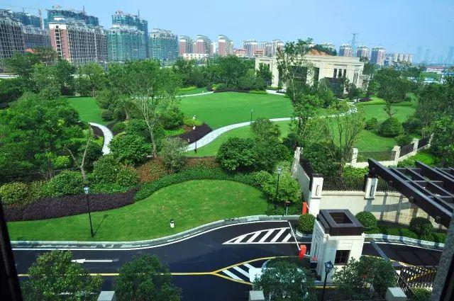 綠化設計中地被放線手法運用