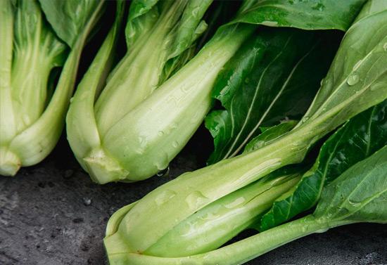 丝瓜视频宅男我国茎叶类蔬菜有序收获技术达国际领先水平