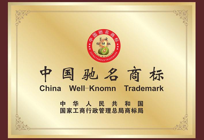 中國**商標.jpg