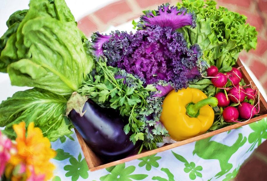 有机蔬菜为何那么贵?