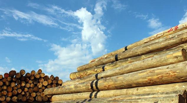 木門行業兩級分化明顯 如何快速突破瓶頸?