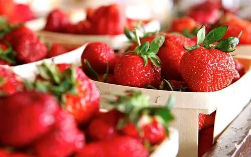 科学的草莓冬季管理措施