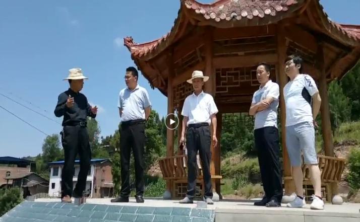 開江縣組織部、永興鎮黨委、龍頭橋村委三級領導來我公司園區視察