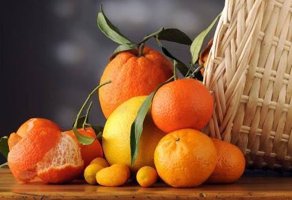 柑橘類水果爲何這麽受歡迎