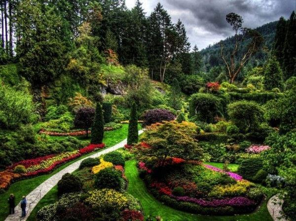 园林绿化苗木养护措施及管理要点