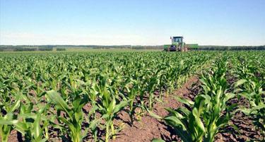 退出首超新增 氮肥业去产能现拐点
