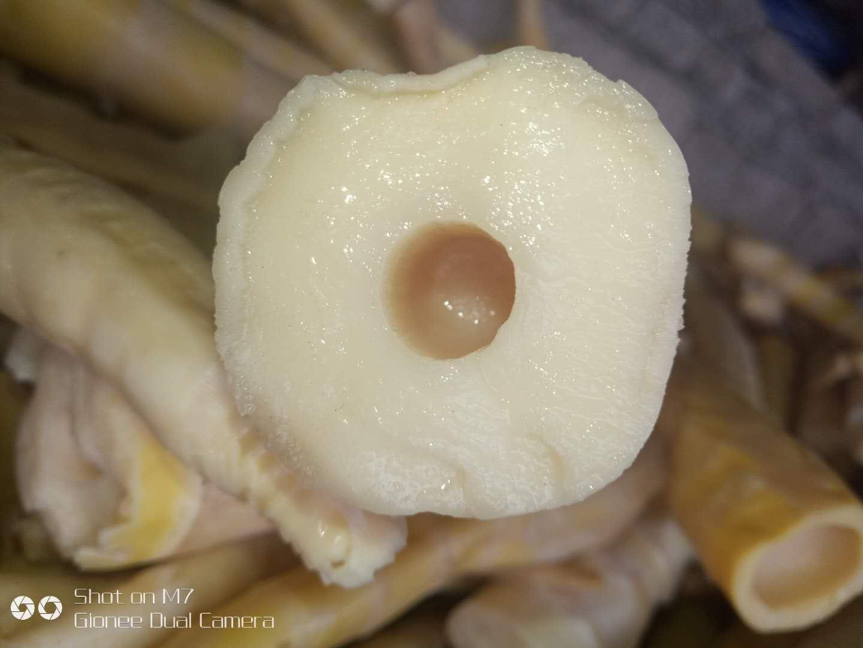 方竹筍肉質豐厚,纖維細脆、化渣、口感好。