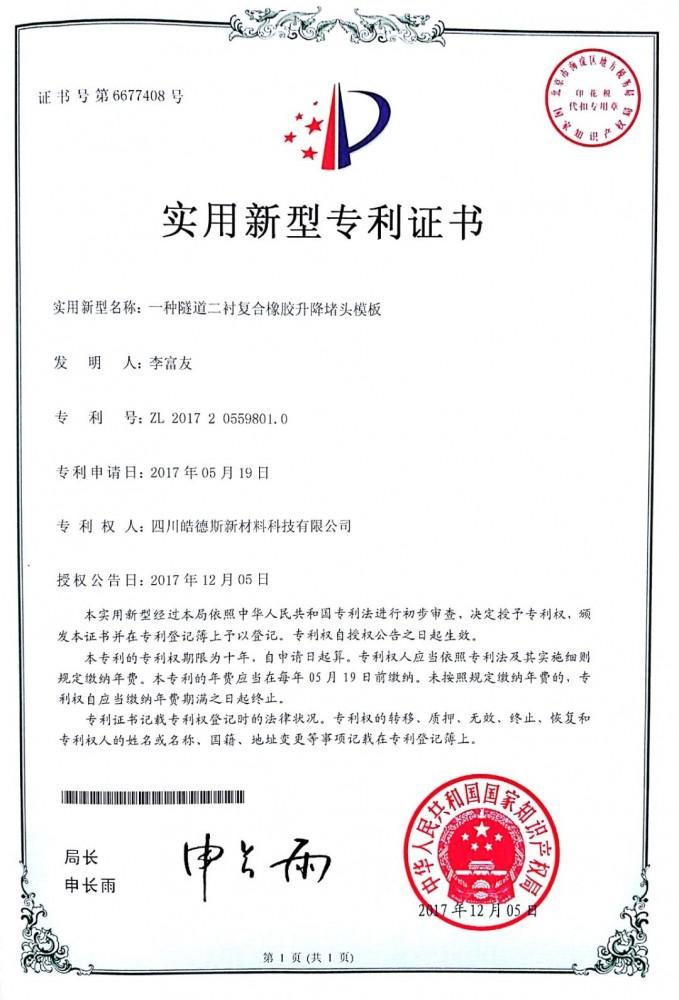专利证书801.0.jpg