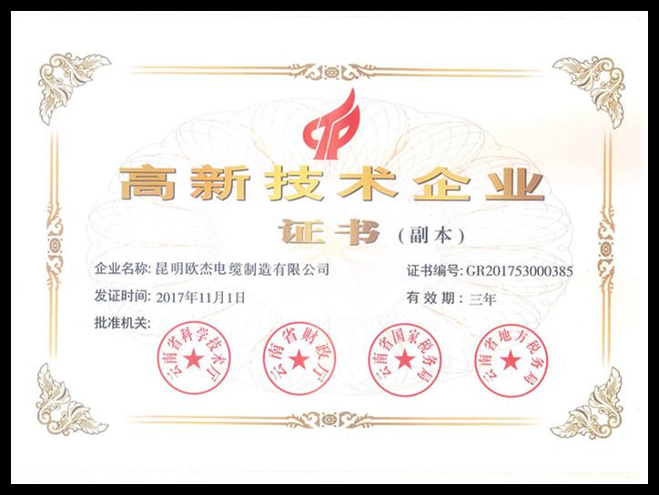 高新技术企业证书_副本.jpg